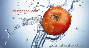 آب گوجه گیری صنعتی